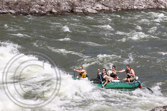 Montana River Photography LLC   Green Fish Craft